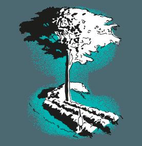 Green soil sensor with tree illustration