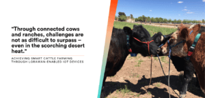 featured image for cattle tracking