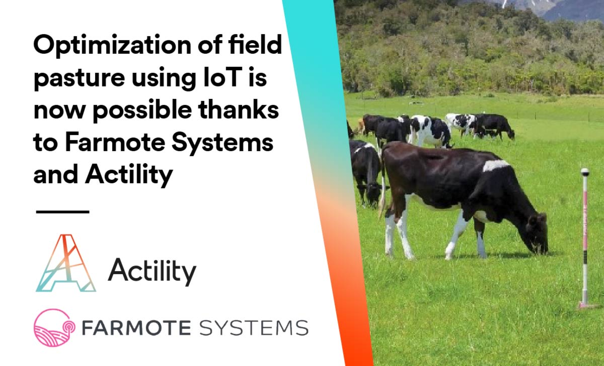 Optimization of field pasture using IoT is now possible thanks to Farmote Systems and Actility